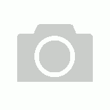 Small Brass Tropical Palm Wall Hook